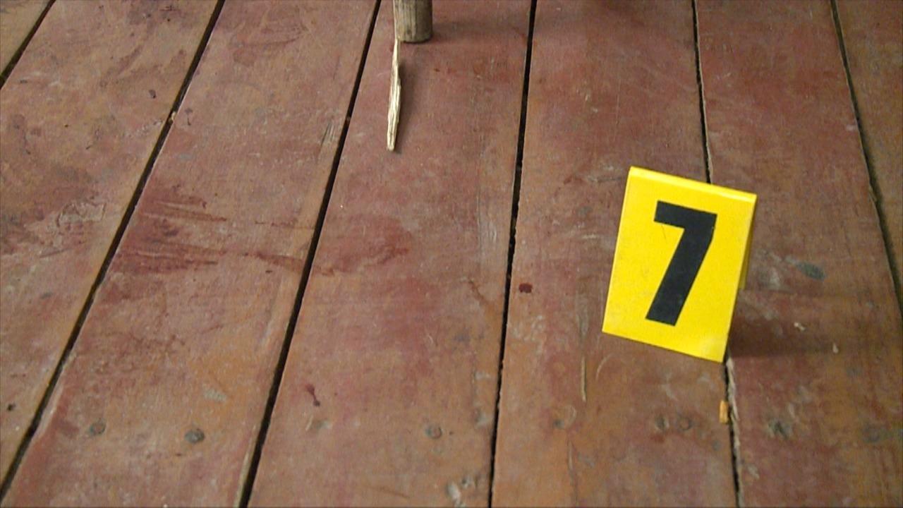 Забив палицею: у Калинівському районі чоловік вбив приятеля по чарці (Фото)