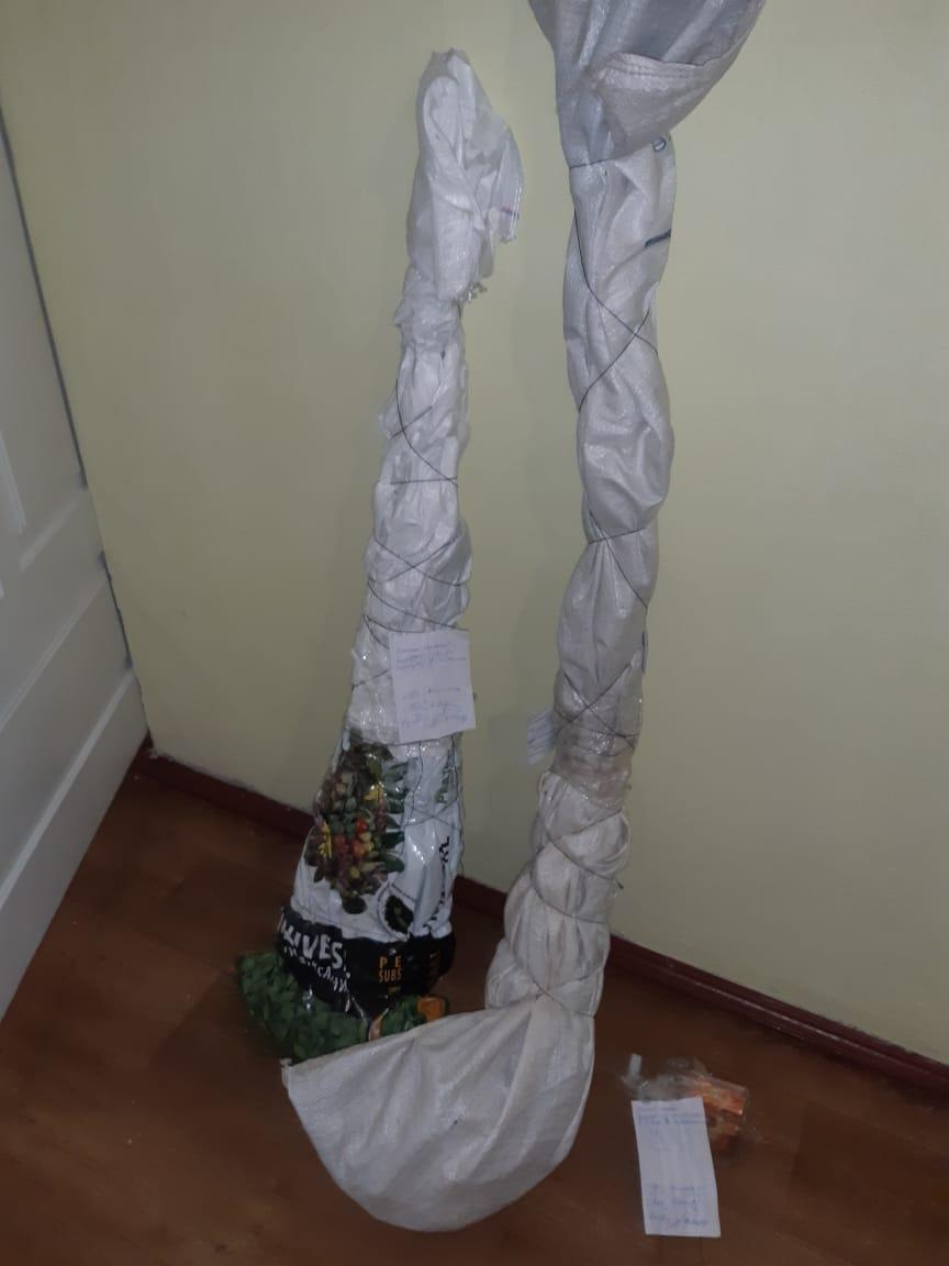 У Томашпільському районі чоловік культивував елітні сорти конопель (Фото)