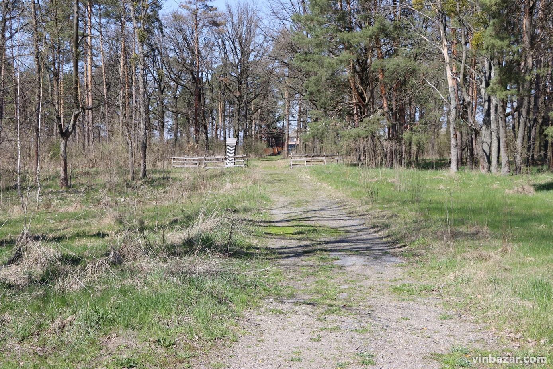 Ставка Гітлера Wehrwolf біля Вінниці: як з'явився міф про бункер та, чому досі не проводять розкопки? (Фото+Відео)