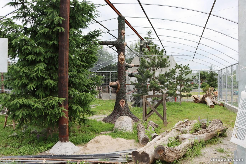 У зоопарку Вінниці зводять новий вольєр для рисів (Фото)