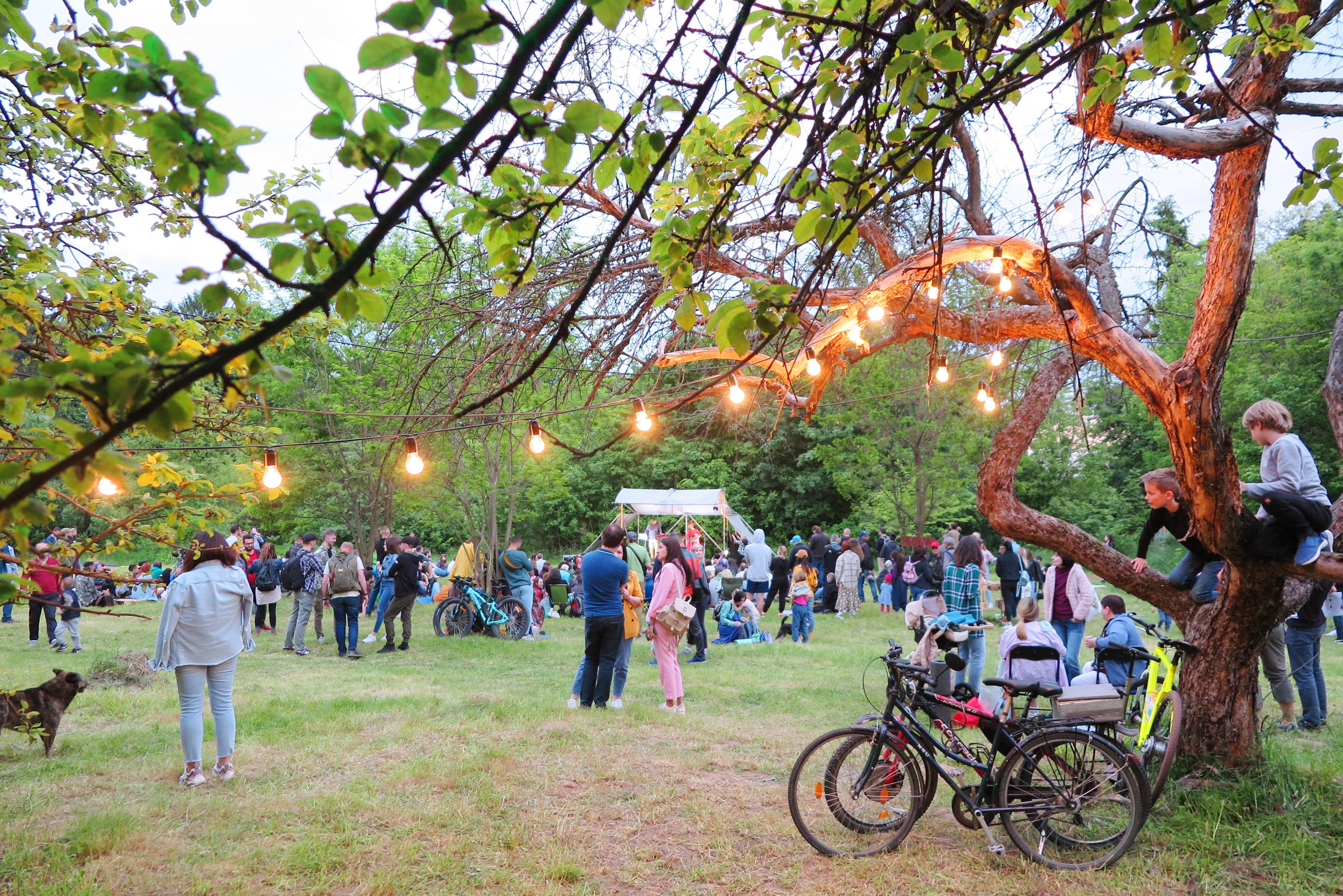 У Вінниці відбудеться мистецький фестиваль просто неба «Ticket to the Sun» (Фото)