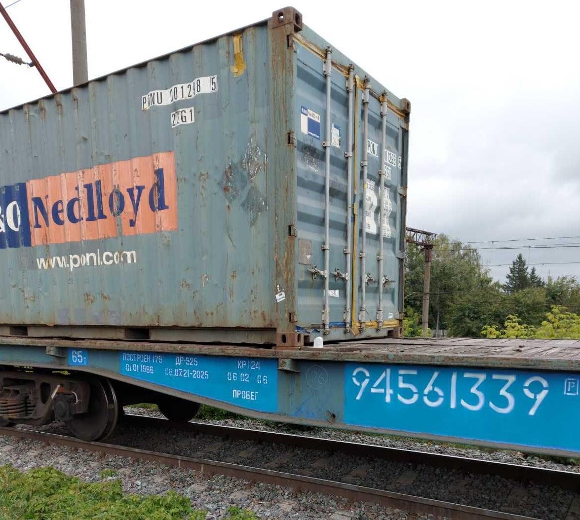 У Жмеринці подружжя намагалося пограбувати вантажний потяг (Фото)