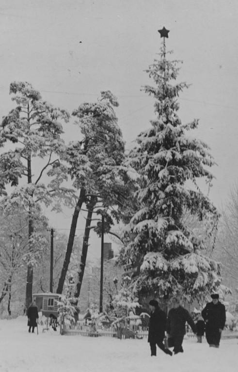 Як виглядала головна новорічна ялинка Вінниці у 60-х роках (Фото)